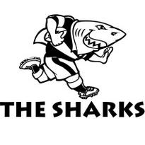 Currie Cup 2014 Sharks XV