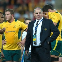 Wallabies – What is happening down under ?